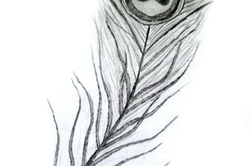 Black Peacock Feather Drawing