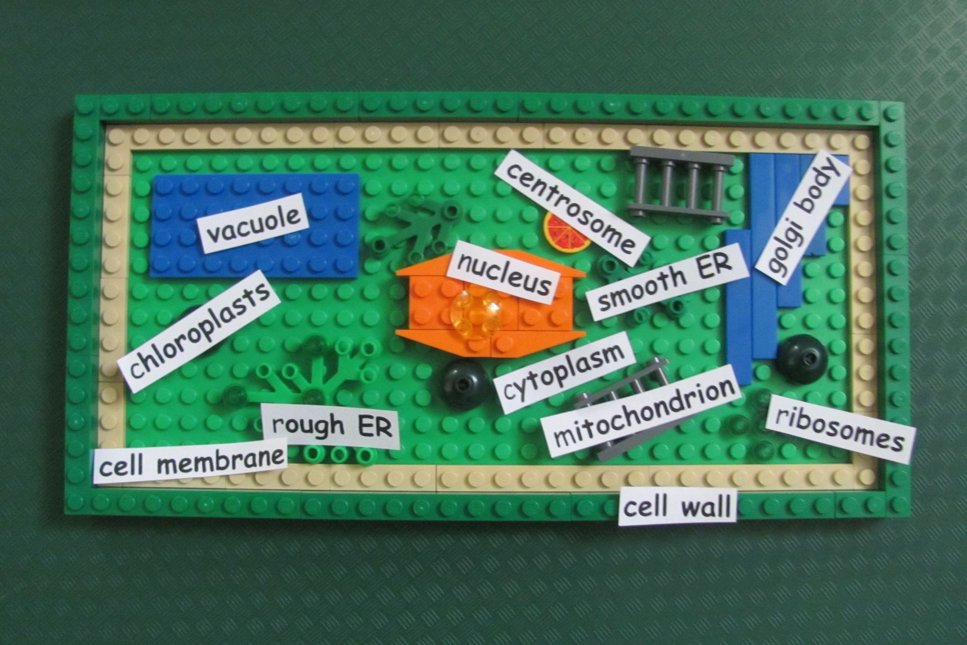 Lego plant cell diy ccuart Choice Image