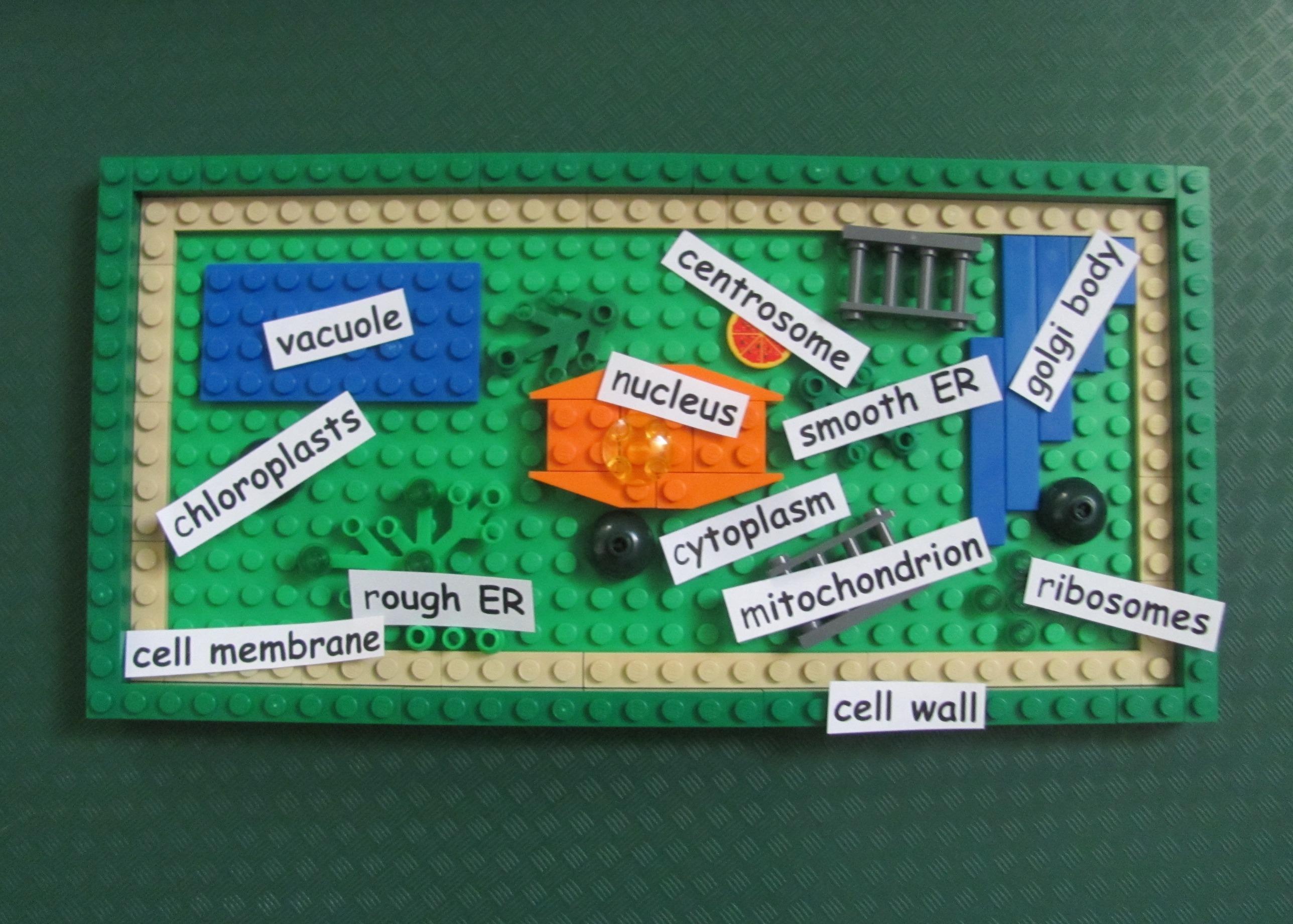 Lego plant cell - DIY
