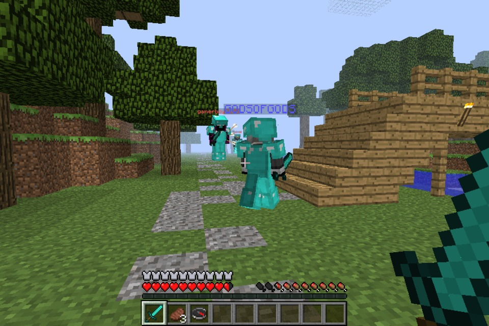 game play minecraft vs - photo #19