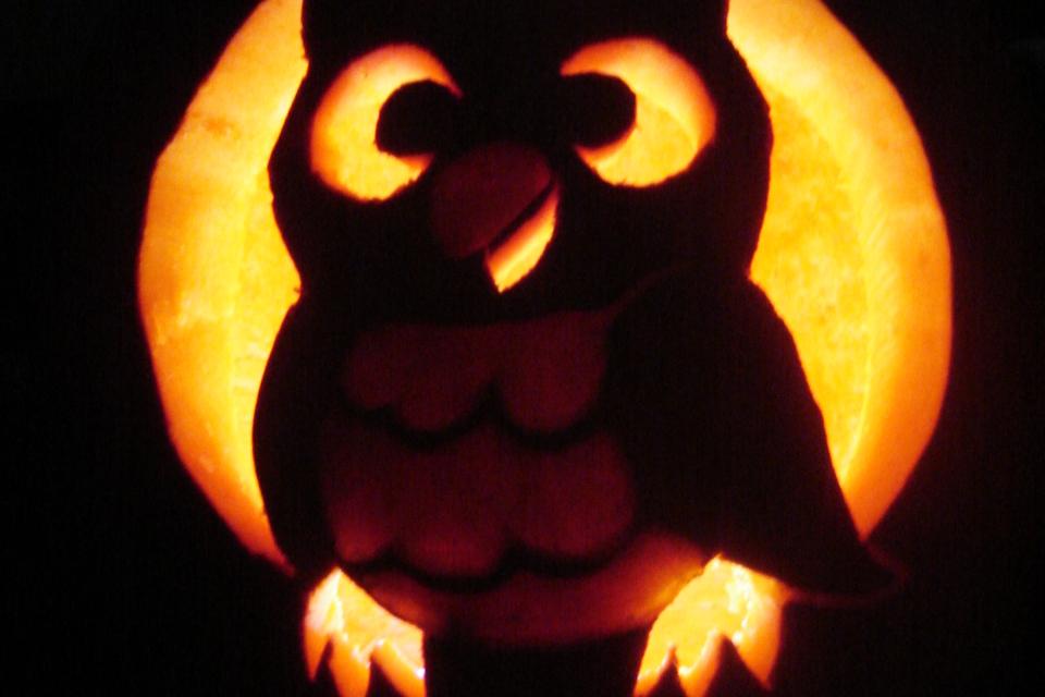 pumpkin carving dc