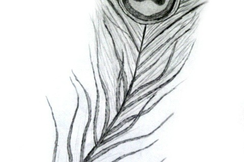 """Natural Patterns"" Sketch Collection - DIY"