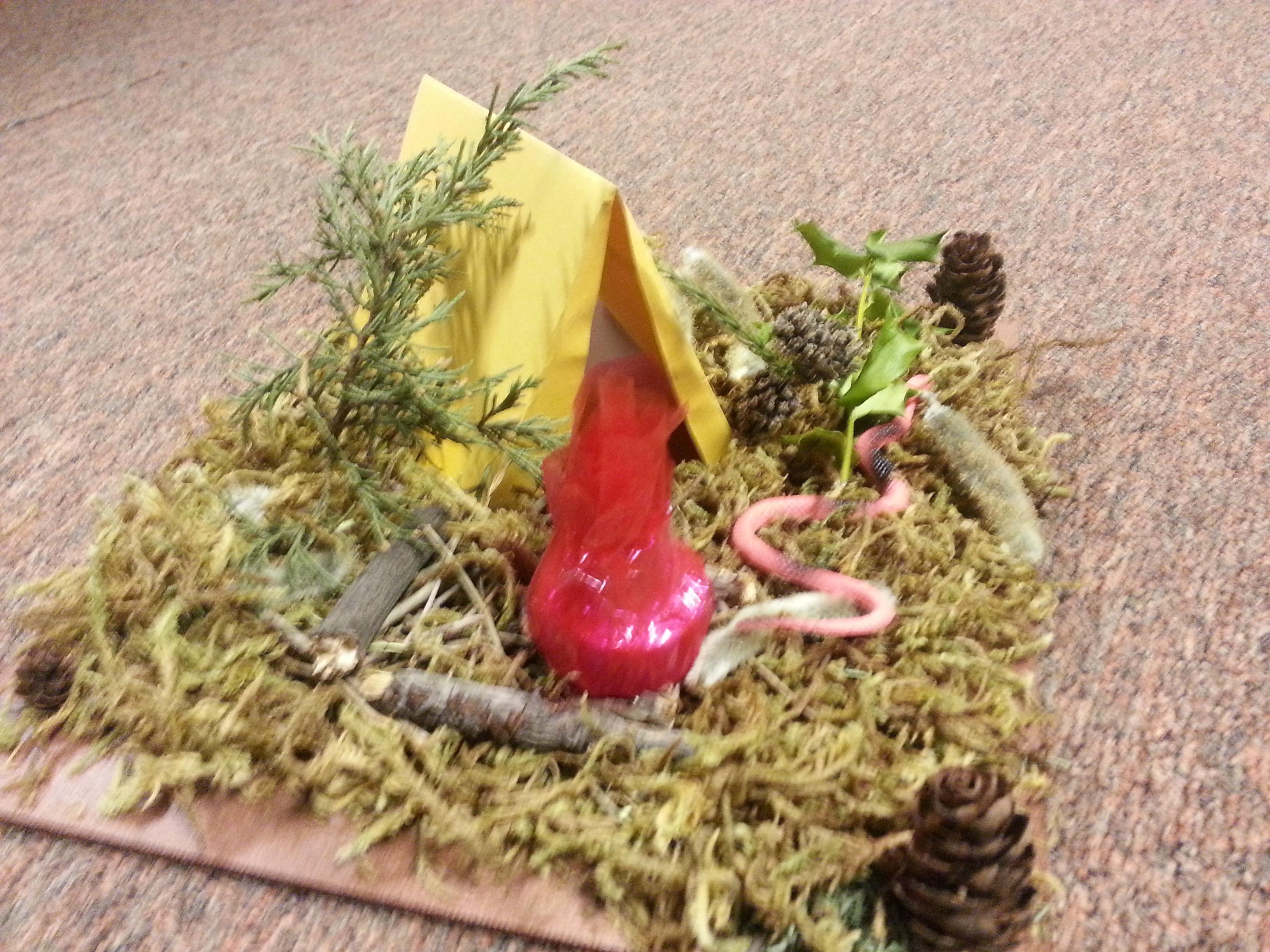 snake habitat diorama campground diy